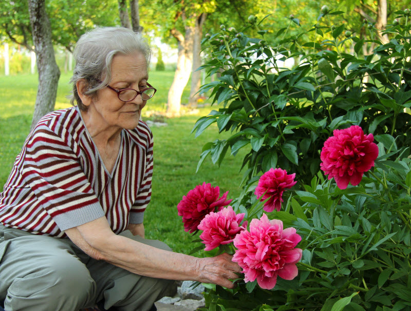 Senior Picking flowers 800px